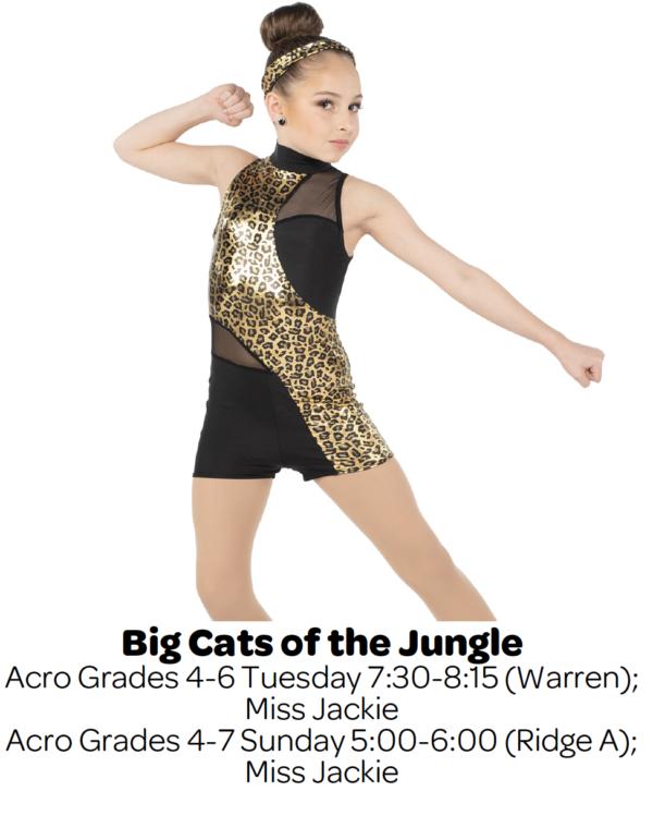 Dance T-Shirt Dancer Leap TShirt Personalised Dancing School T shirt Ages 5-15